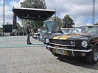 Mustang treff Fredriksten festning 2015